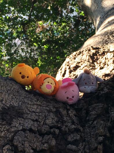 Winnie-the-Pooh-Tsum-Tsum